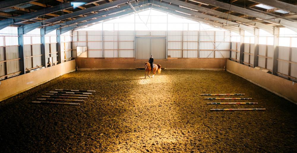 Indoors dressage training