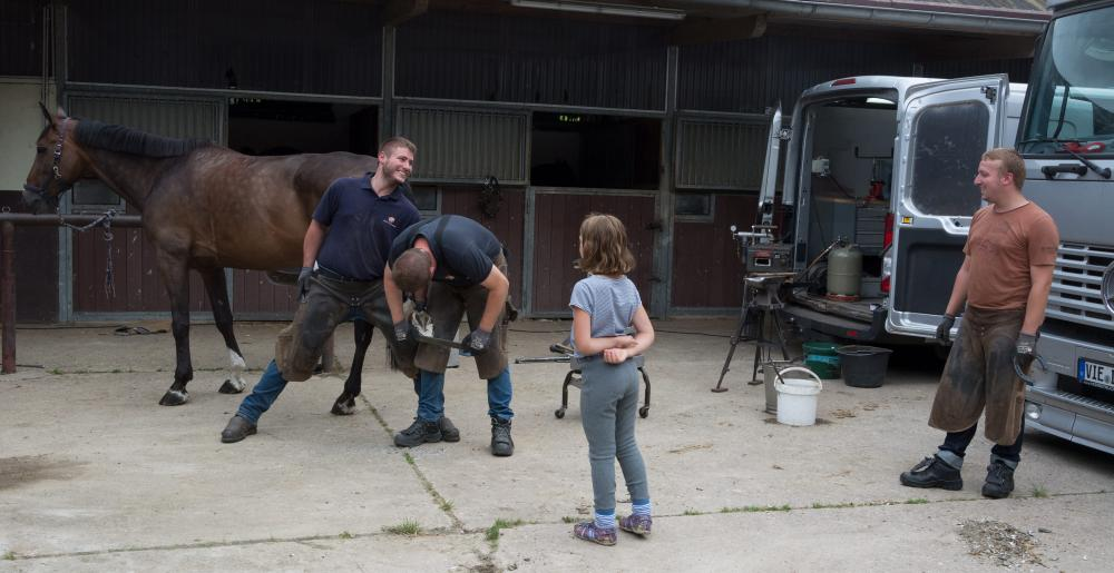 German farrier Errol Wernike and his team at work